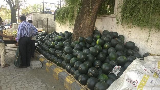 fruits nagpur