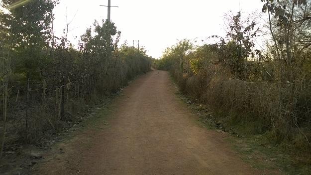 aravali biodiversity park vasant kunj