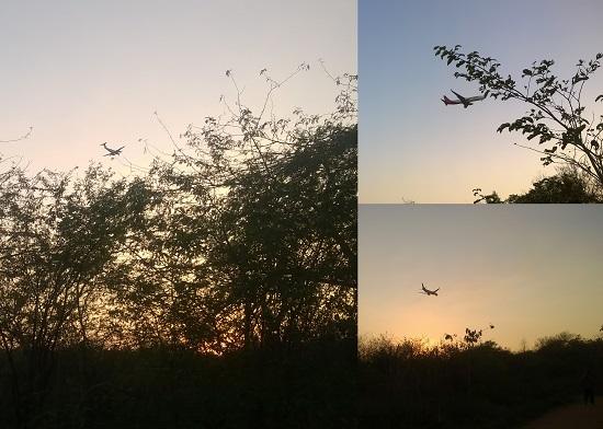 aravali park delhi