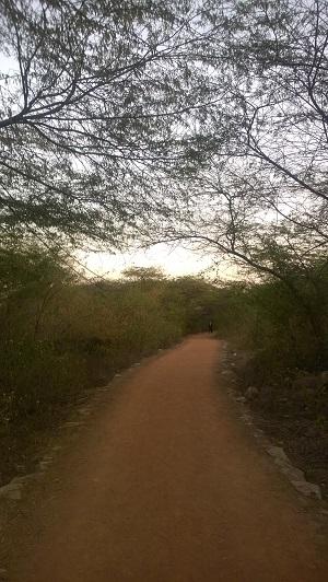 biodiversity park in delhi