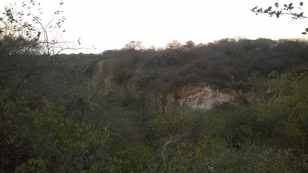 gorge inside aravali biodiversity park