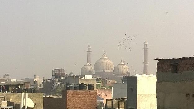 old delhi rooftops