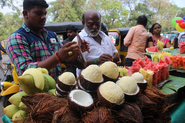 coconut sprout chennai