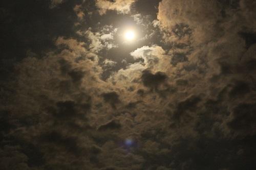 moonlit night at soma